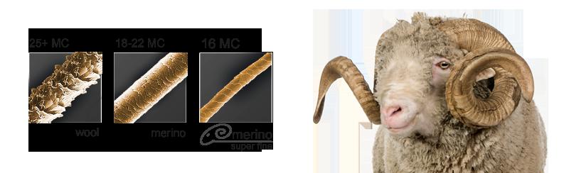 Her ses merinouldets fibre sammenlignet med andre typer uld